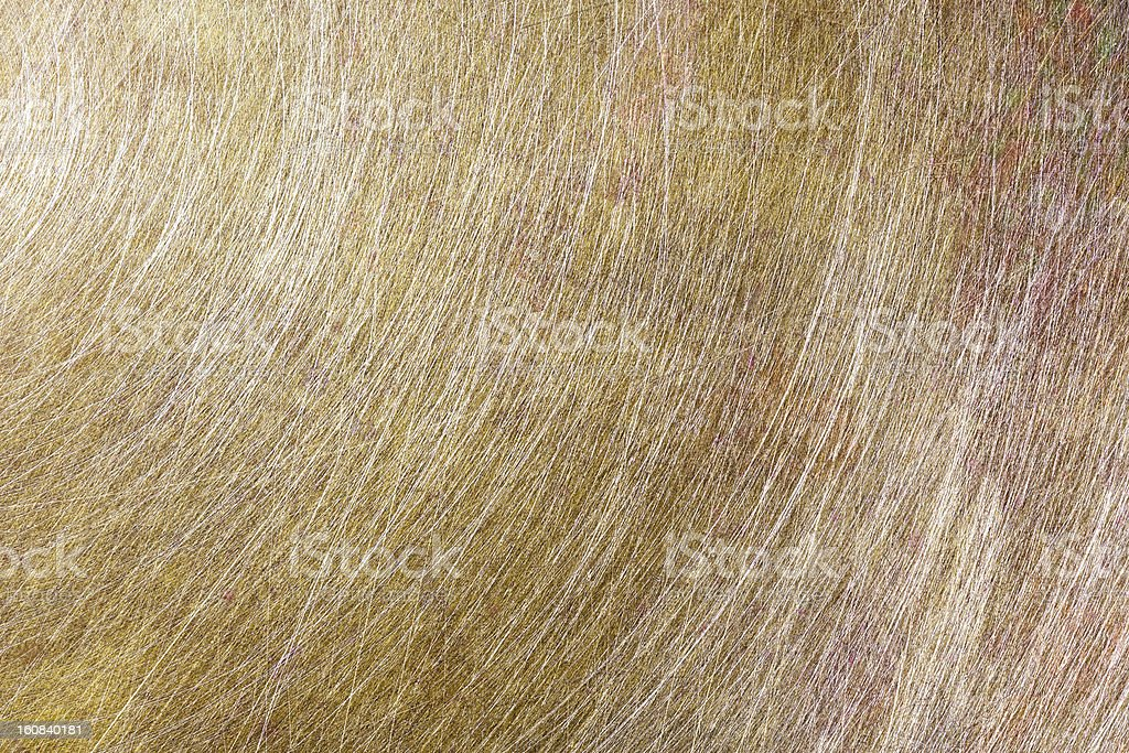 Brashed copper metal royalty-free stock photo