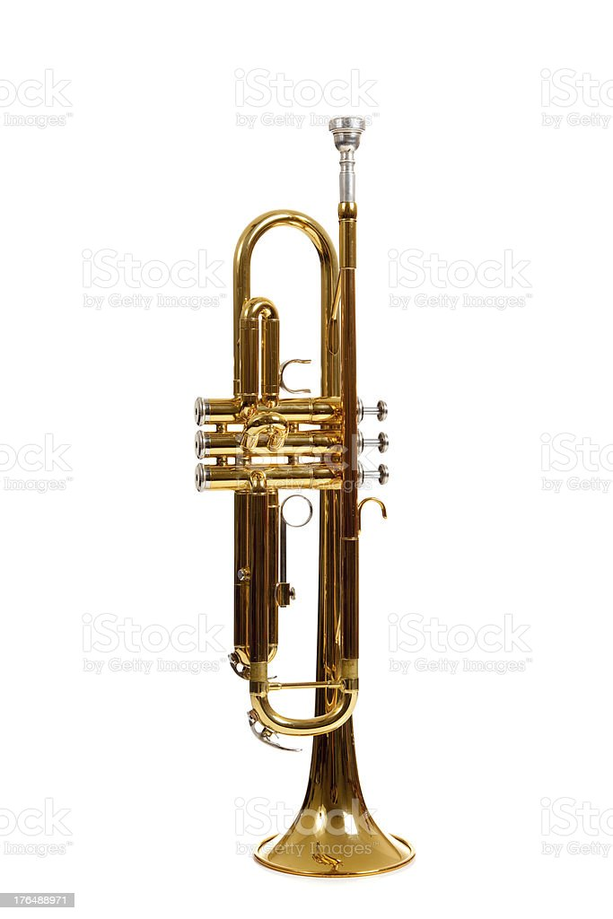 Brass trumpet on a white background royalty-free stock photo