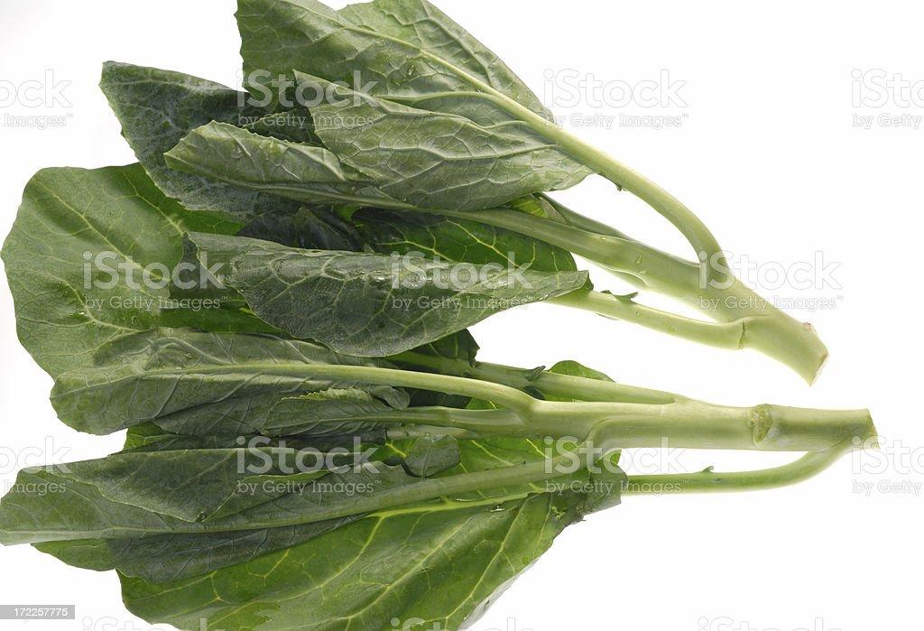 Brassica alboglabra, Kale royalty-free stock photo