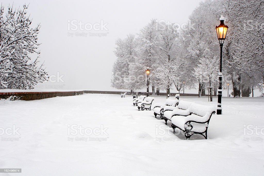 Bratislava - castle park  in winter morning royalty-free stock photo