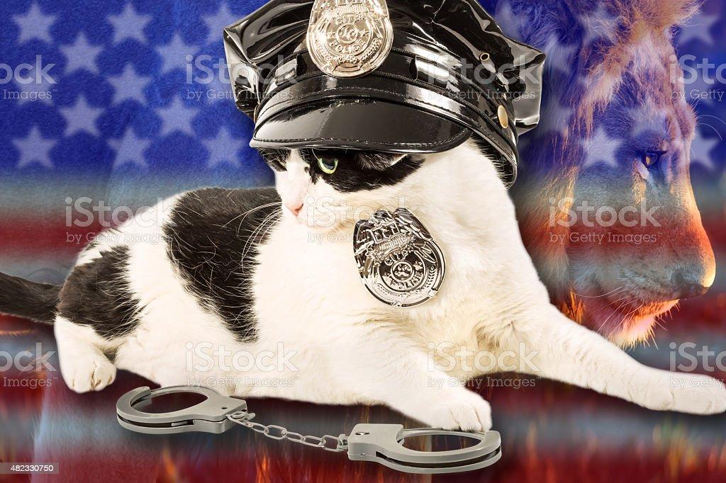 Brave Cop Cat stock photo