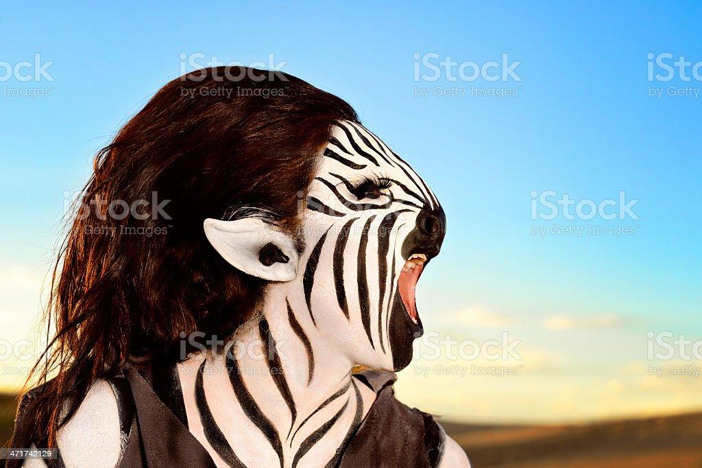 Braying Zebra - Humanoid stock photo