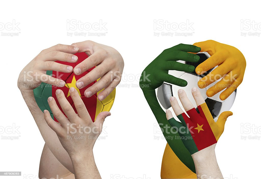 Brazil 2014 - Cameroon royalty-free stock photo