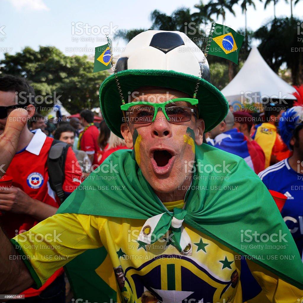 Brazil fan, World Cup 2014 stock photo
