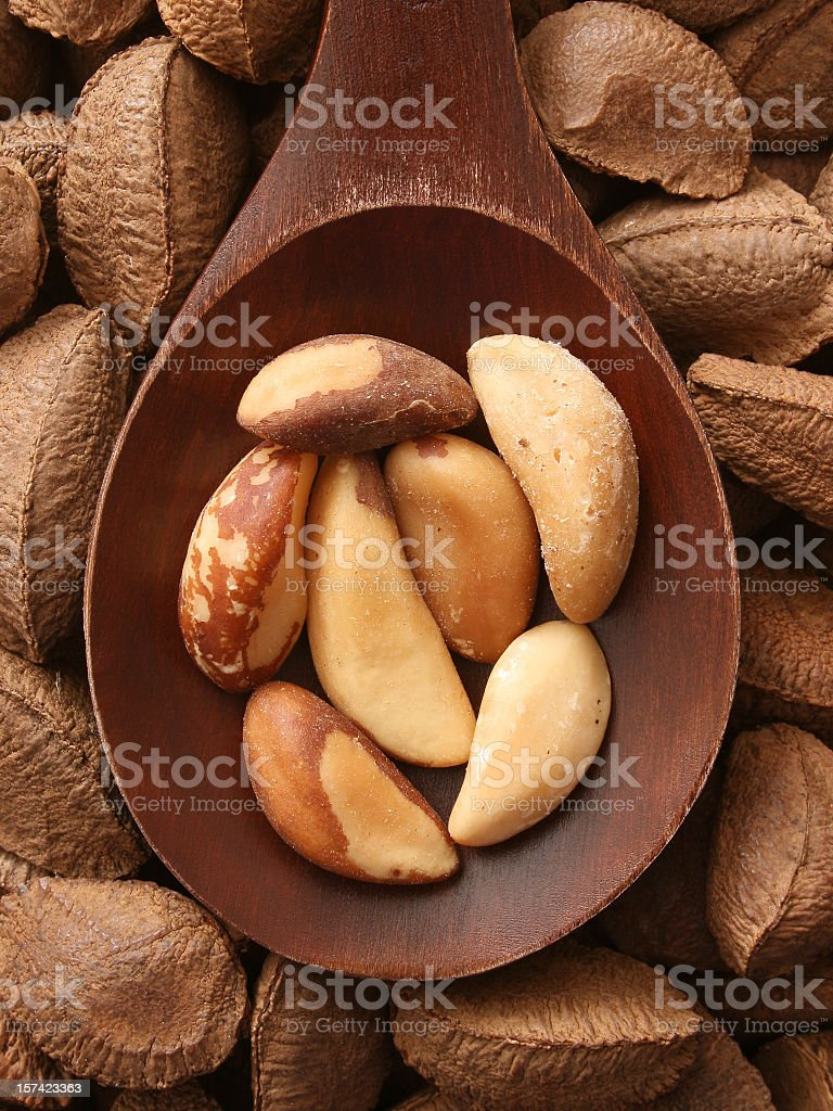 Brazil nuts royalty-free stock photo