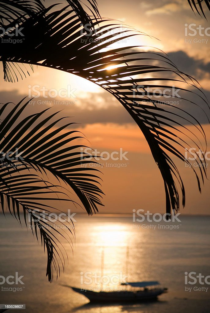 brazil sunset silhouette royalty-free stock photo