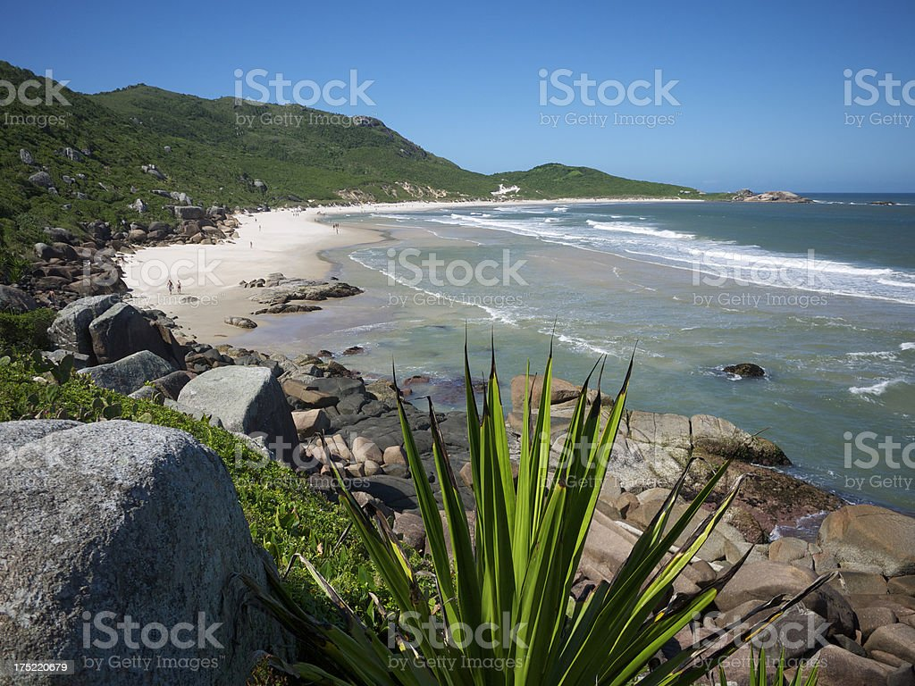 Brazilian Beach Florianopolis Bright Shoreline Green Mountains stock photo