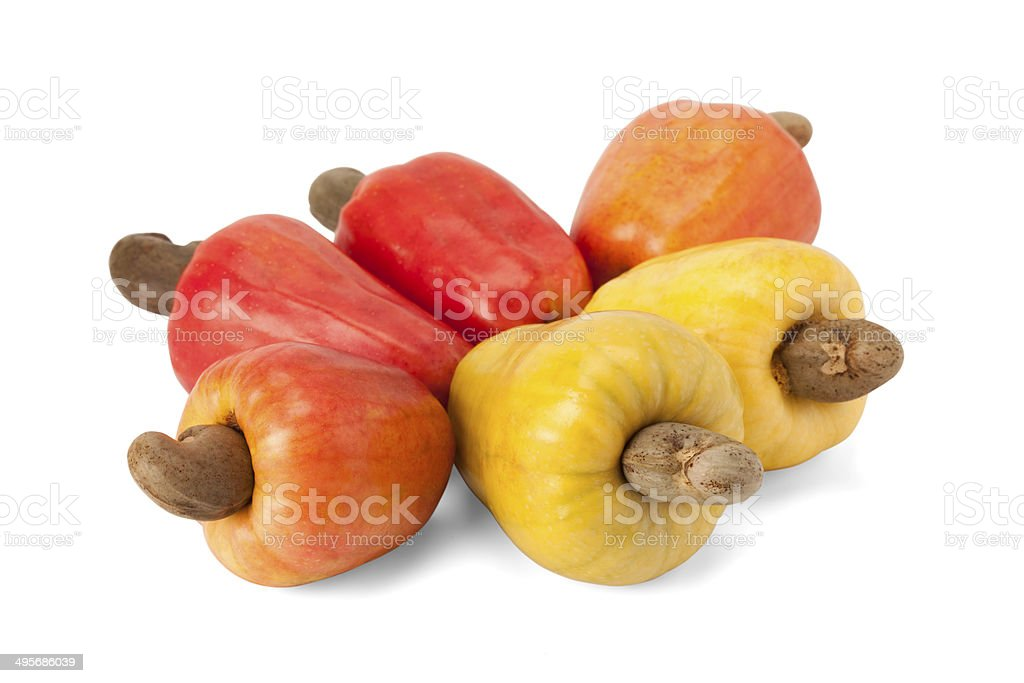 cashew fruit pictures, images and stock photos  istock, Beautiful flower