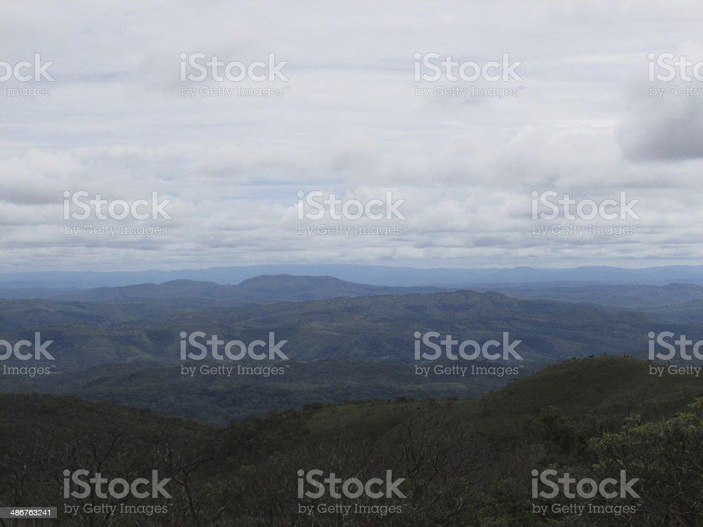 Brazilian Cerrado stock photo