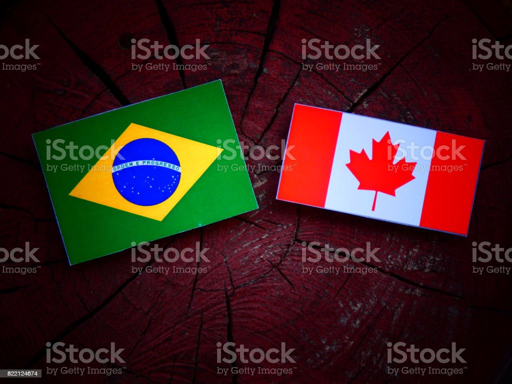 Brazilian flag with Canadian flag on a tree stump isolated stock photo