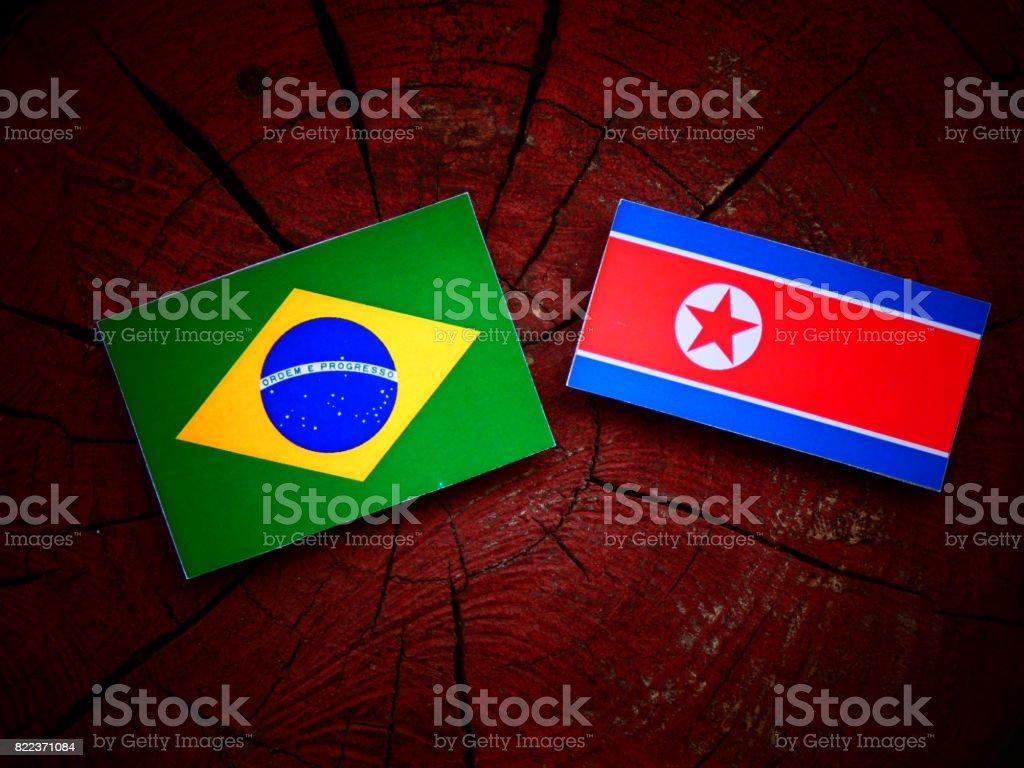 Brazilian flag with North Korean flag on a tree stump isolated stock photo