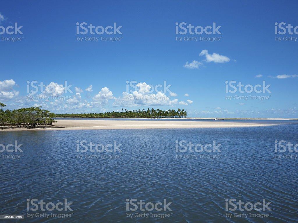 Brazilian River Meets Sea Scenic Sand Shore stock photo