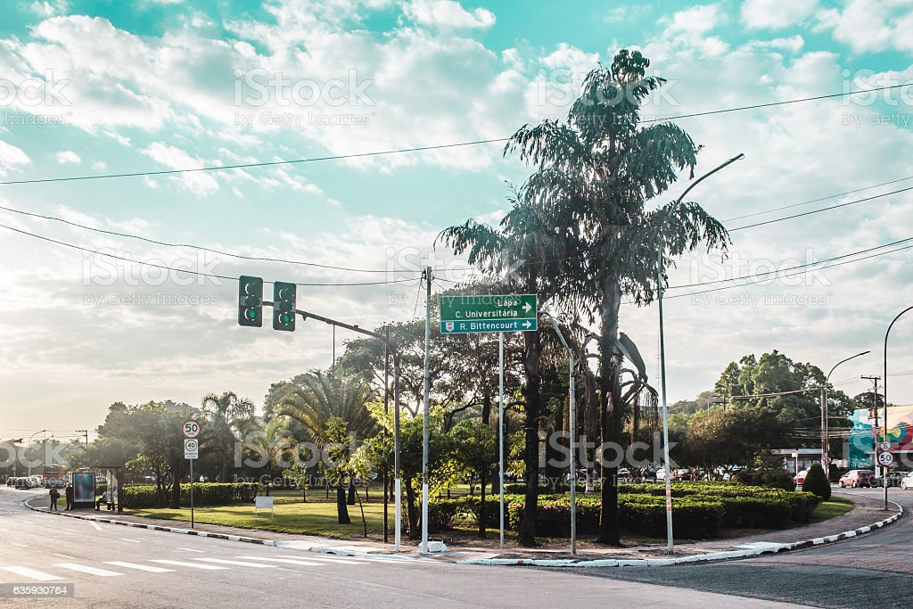 Brazilian Streets Full of Tropical Trees in Sao Paulo stock photo