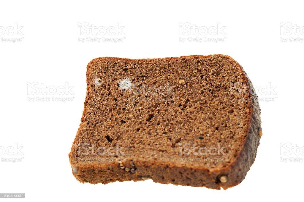 bread mold. close-up stock photo