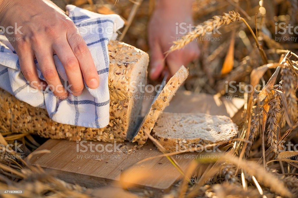 Bread royalty-free stock photo