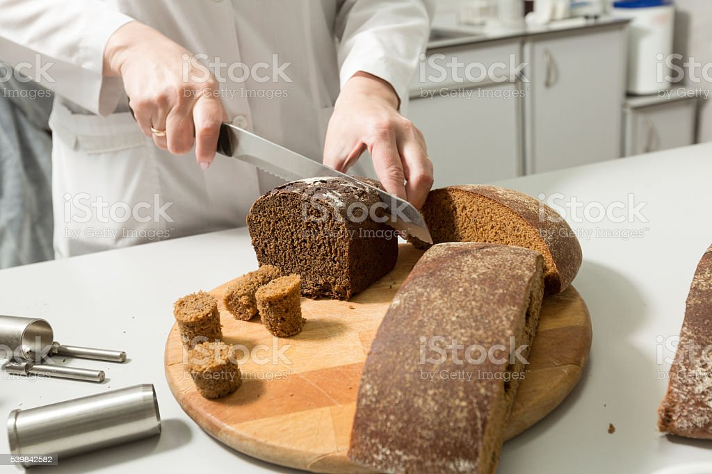 Bread tests in a laboratory stock photo