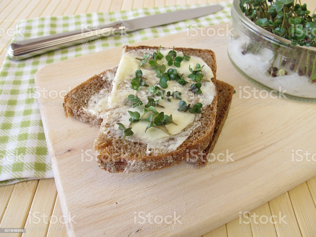 Bread with butter and broccoli sprouts stock photo