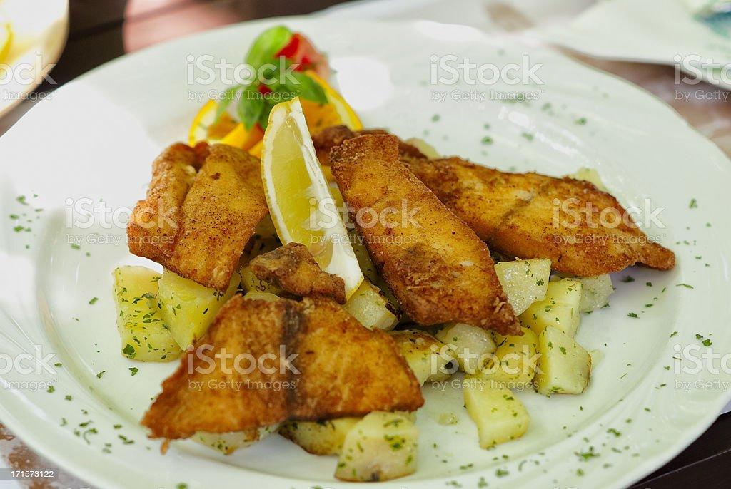 Breaded fish stock photo