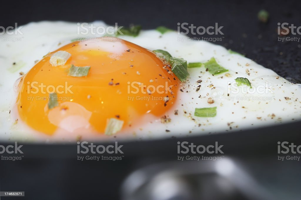 Breakfast Basics - Fried Egg royalty-free stock photo
