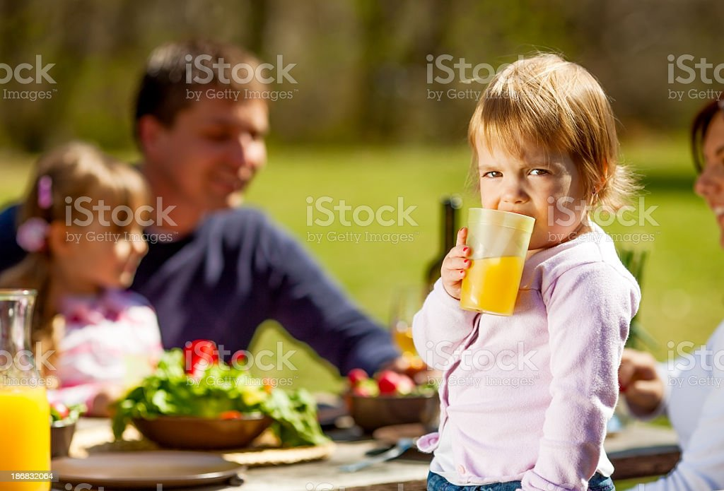 Breakfast in nature royalty-free stock photo