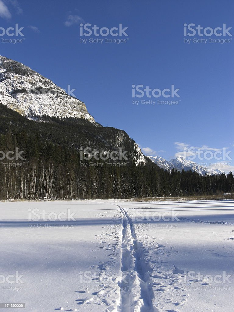 Breaking Trail royalty-free stock photo