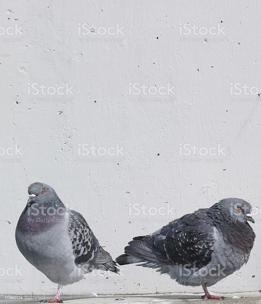 Breaking Up Is Hard To Do royalty-free stock photo