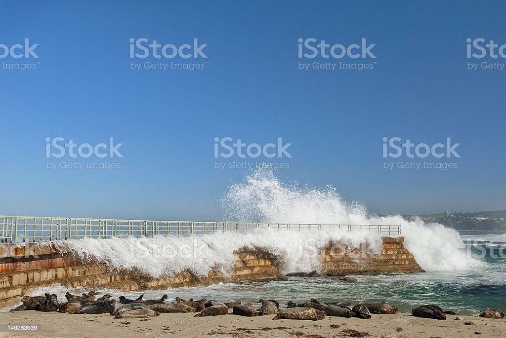 Breaking Wave at La Jolla Children's Cove stock photo