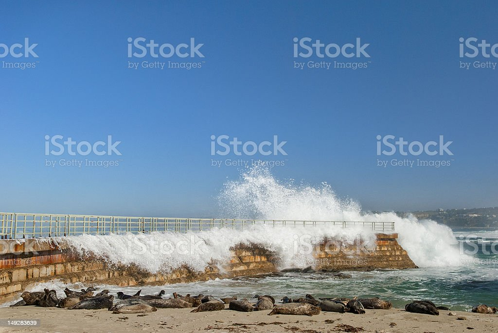 Breaking Wave at La Jolla Children's Cove stock photo