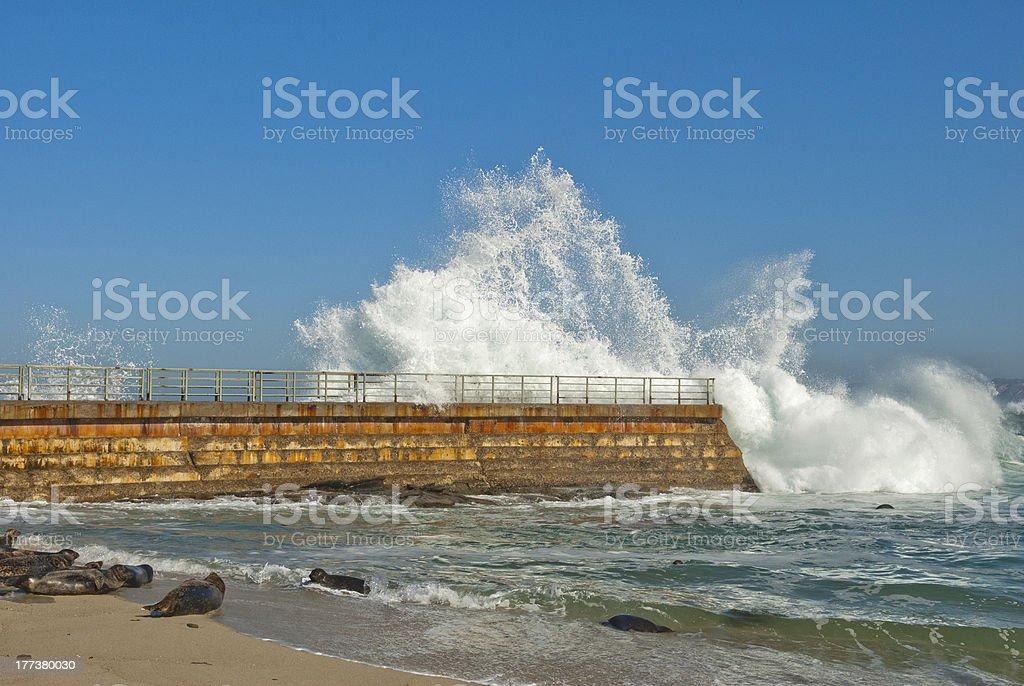 Breaking Wave in La Jolla stock photo
