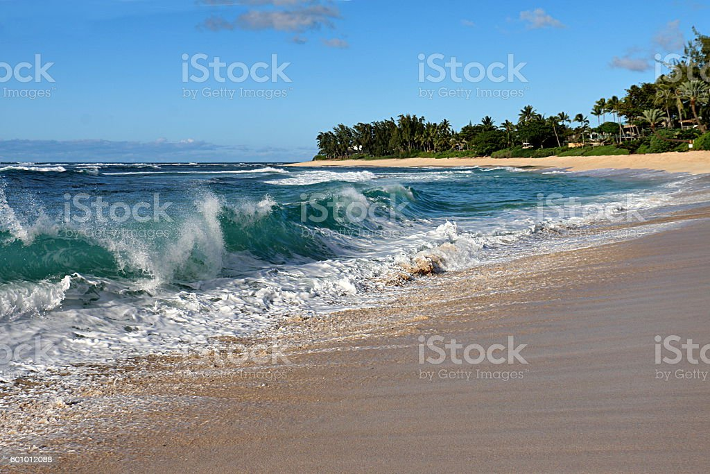 Breaking Wave on Oahu's North Shore stock photo