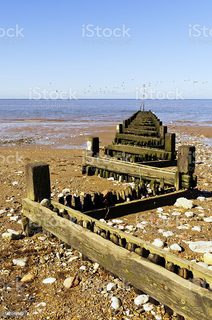 Breakwater and birds royalty-free stock photo