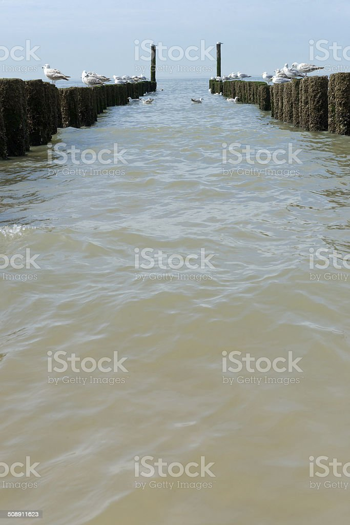 breakwaters in waves on the beach at the north sea royalty-free stock photo
