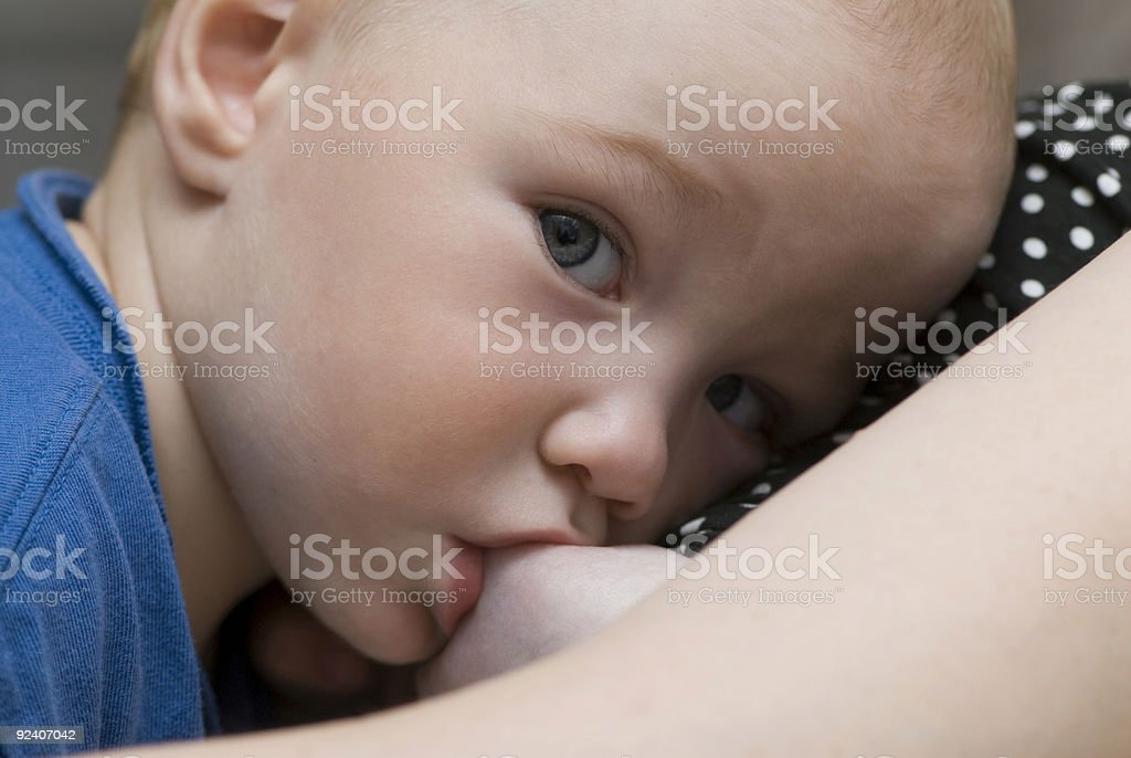 Breast feeding of the newborn baby royalty-free stock photo