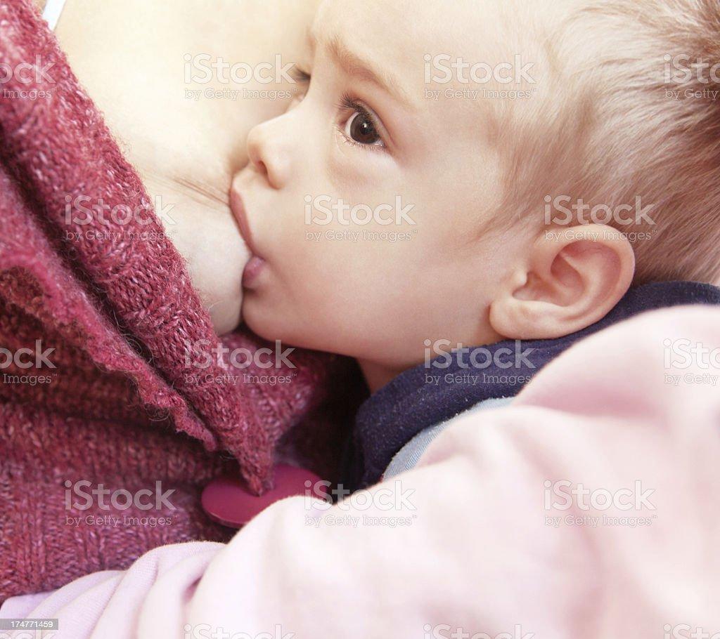 Breast feeding royalty-free stock photo