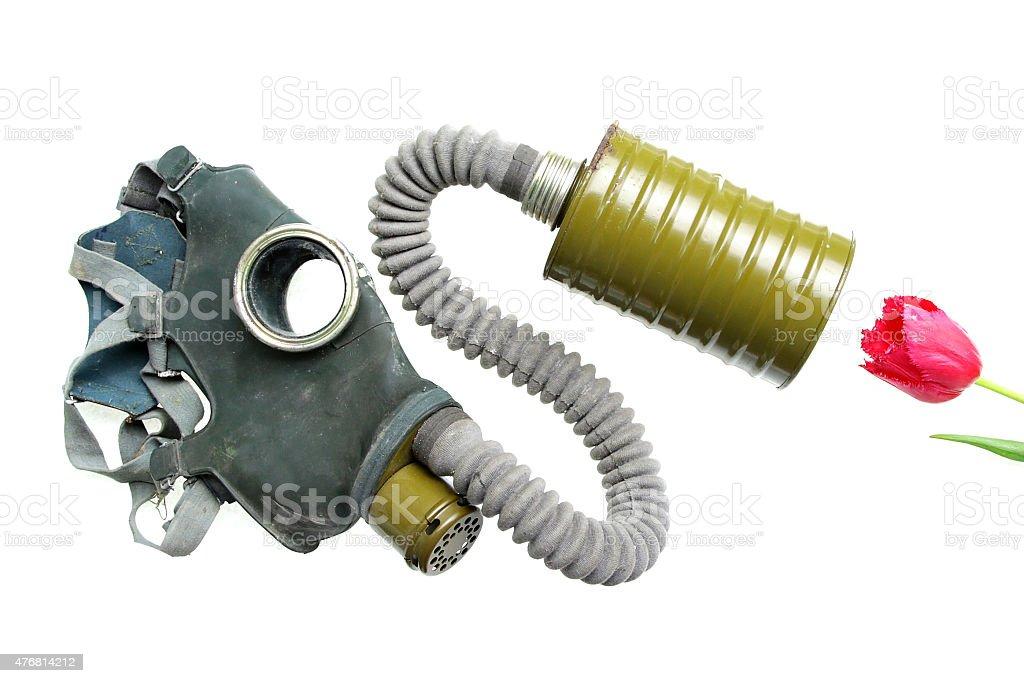 breathing gas mask oxygen smelling flower stock photo