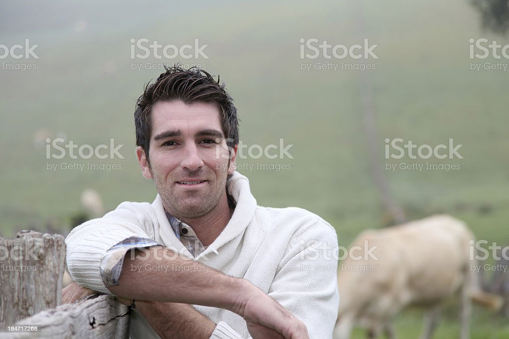 Breeder standing in field with cows looking at camera stock photo