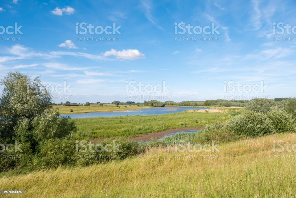 Breemwaard nature reserve in forelands of river Waal, Netherlands stock photo