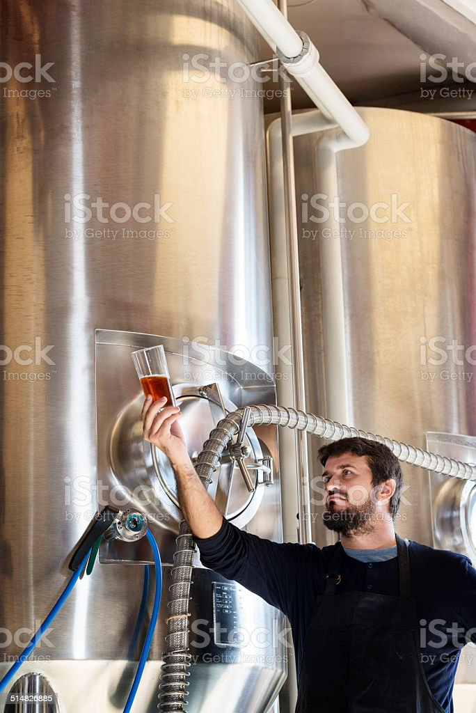 Brewmaster Checking His Beer stock photo