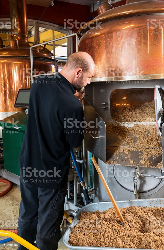 brewmaster filling vat with hops stock photo