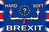 Brexit soft or hard exit option poster