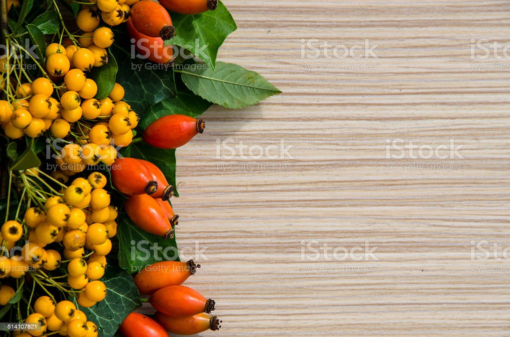 briar and yellow berry background stock photo
