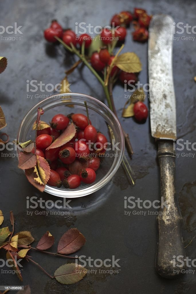 briar - rose and old knife vintage style royalty-free stock photo