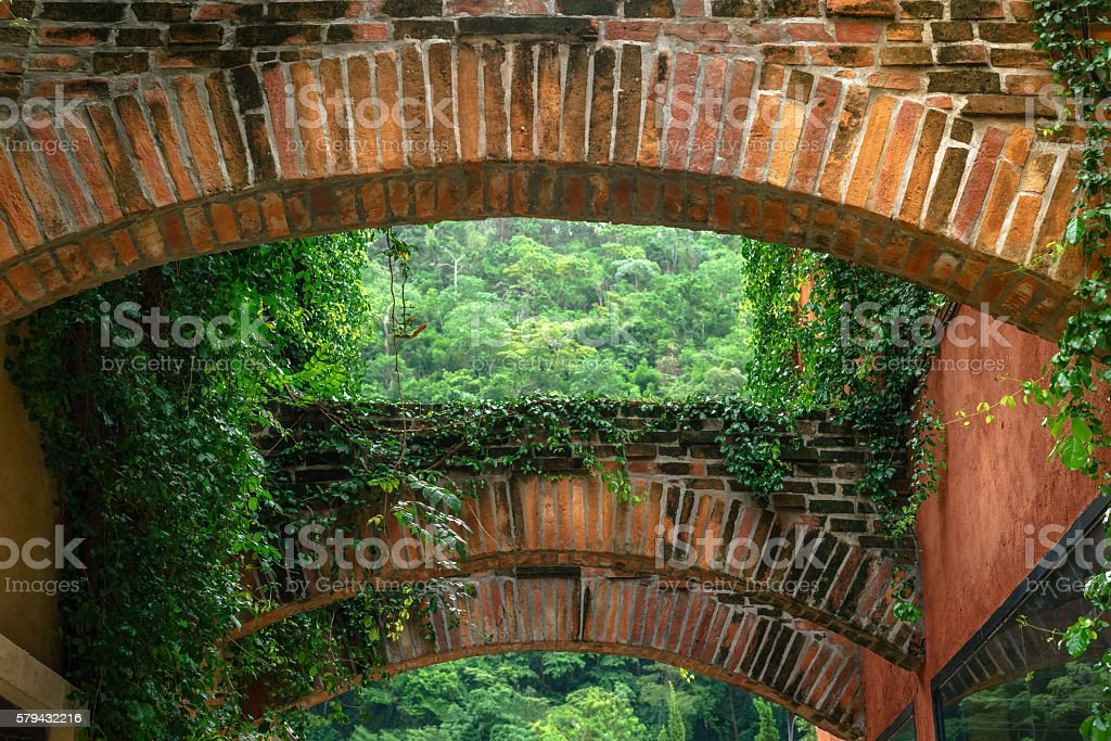 Brick archway covered with vines photo libre de droits