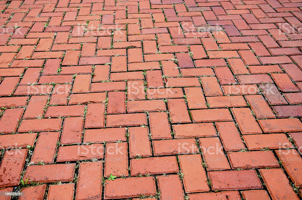 Brick Path royalty-free stock photo