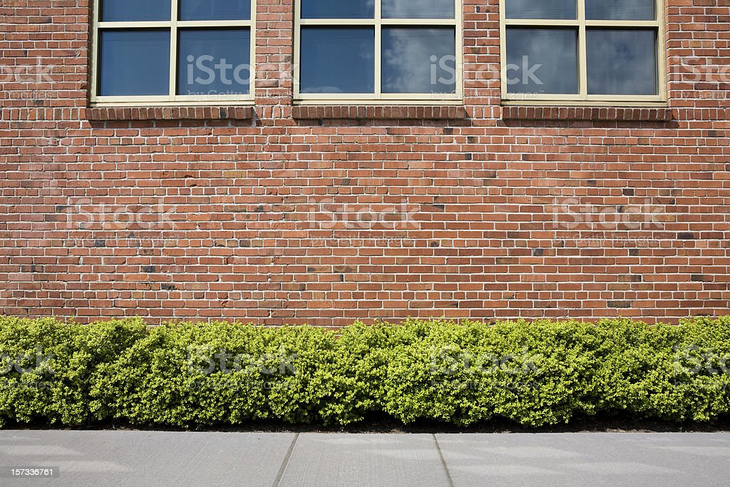 Brick wall with windows, sidewalk, hedge and shrubs as background royalty-free stock photo