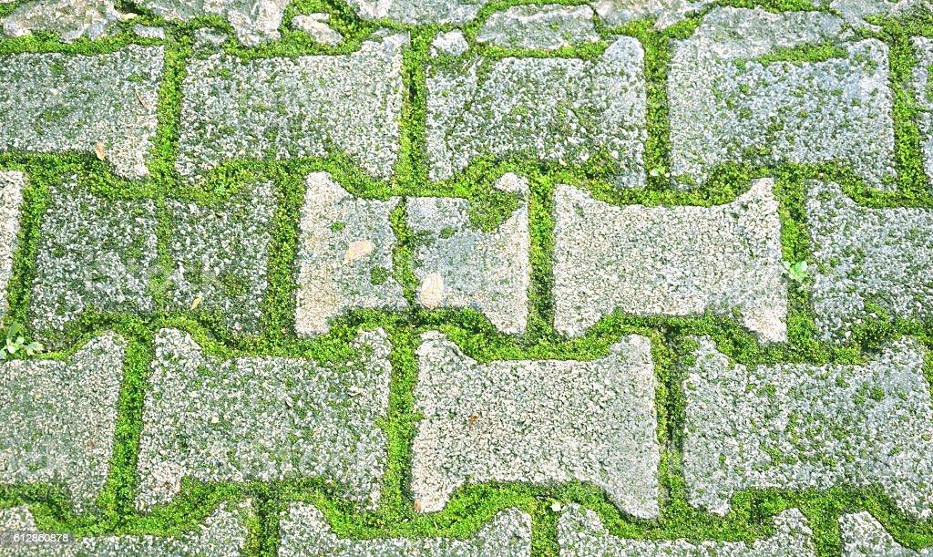 brick with moss floor royalty-free stock photo