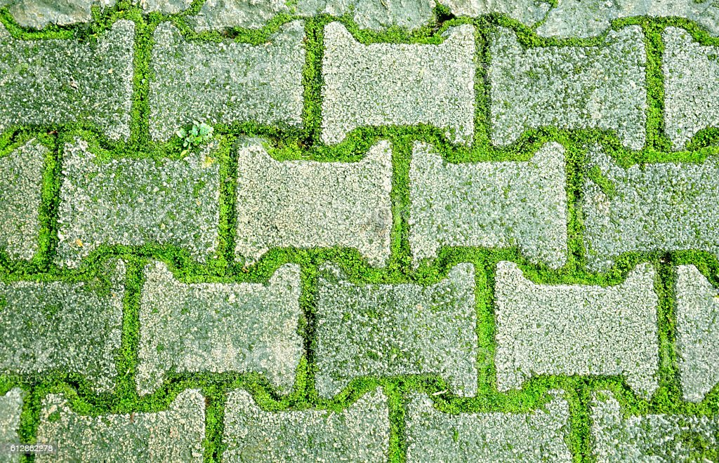 brick with moss floor royalty-free stock photo