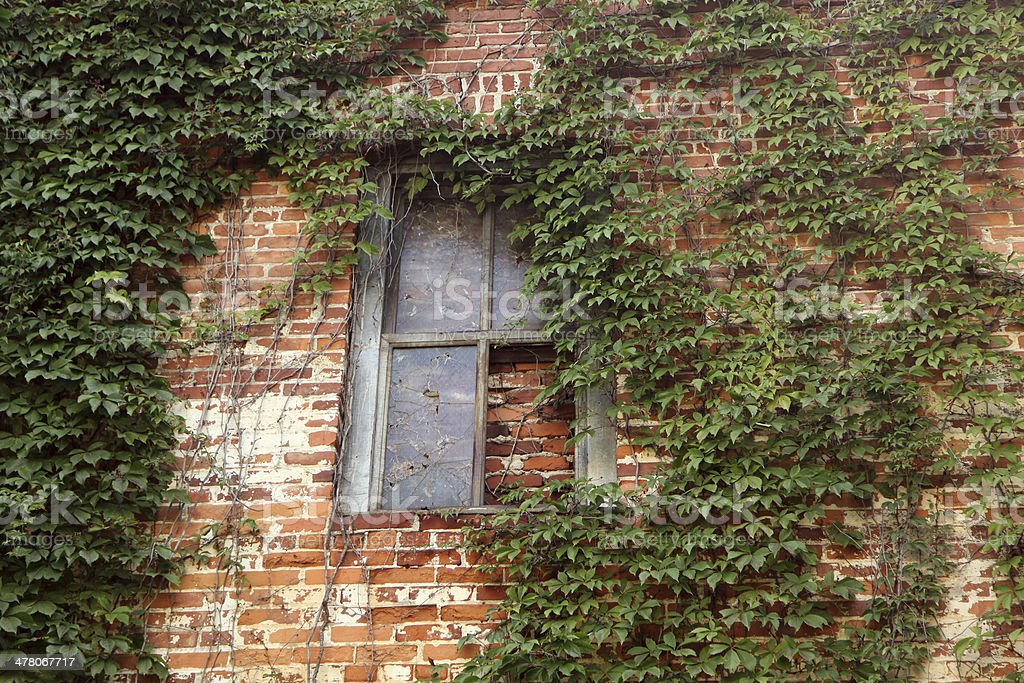 Bricked up Window royalty-free stock photo