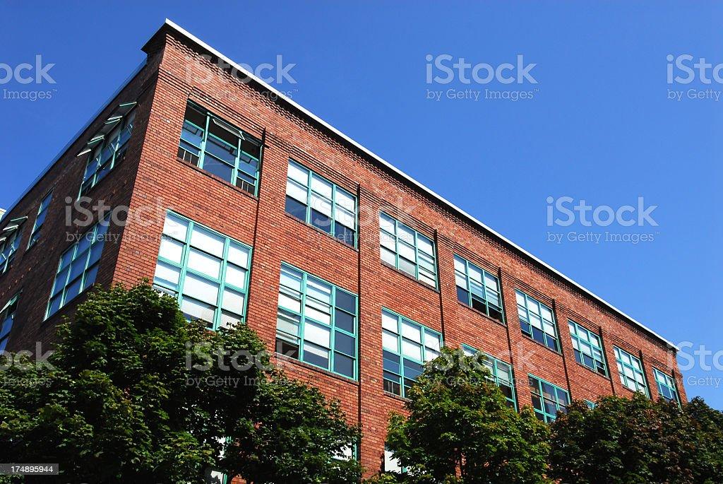 Bricks Grow From Trees... royalty-free stock photo