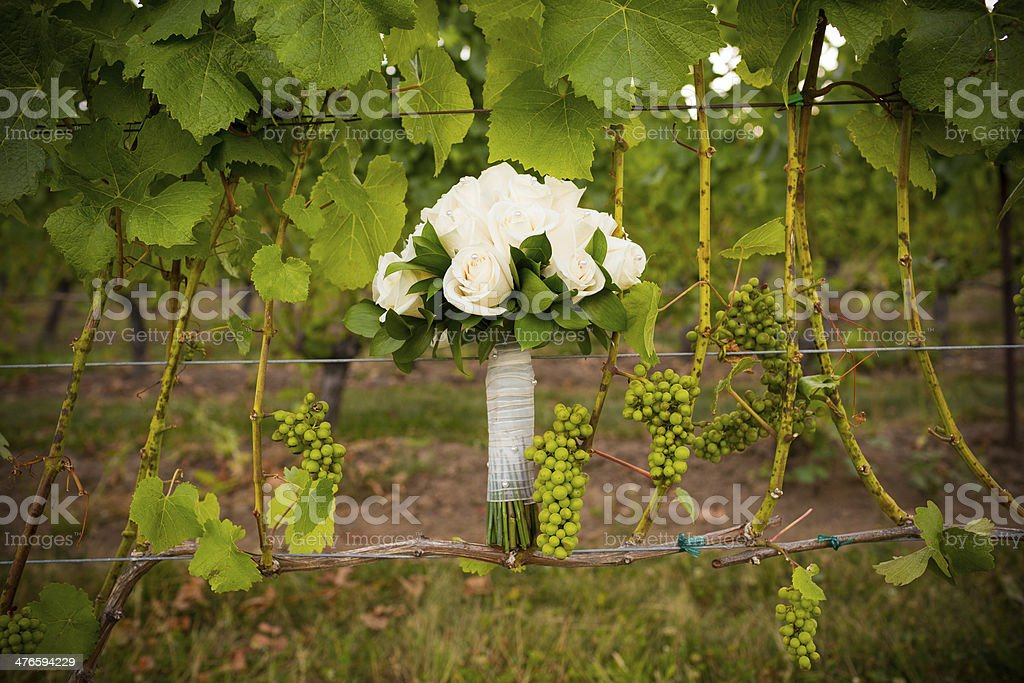 Bridal Bouquet in Vineyard royalty-free stock photo